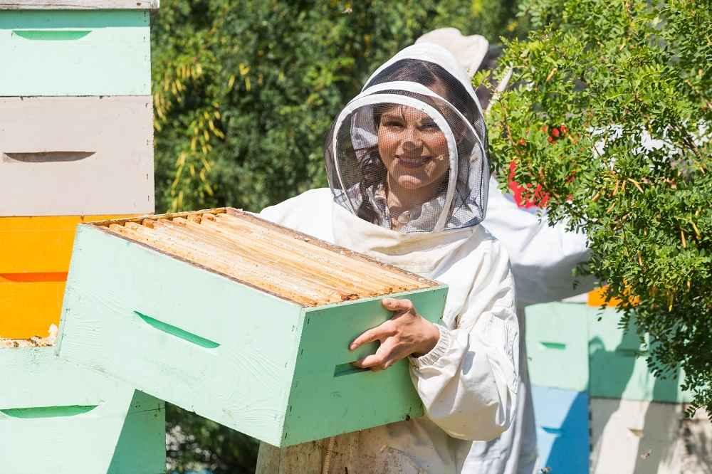زنبوردار حرفه ای