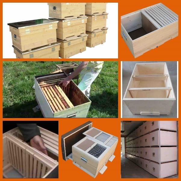 ساخت کندوی مدرن ابتکارات ابتکارات جدید در صنعت زنبورداری+ تصویر  DA A9 D9 86 D8 AF D9 88 D9 87 D8 A7 DB 8C  D8 A7 D9 81 D9 82 DB 8C  D8 AF D8 A7 D8 AF D8 A7 D9 86 D8 AA